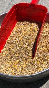Martin's 3-Grain Scratch
